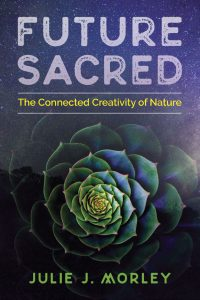 Future Sacred The Connected Creativity of Nature by Julie J. Morley