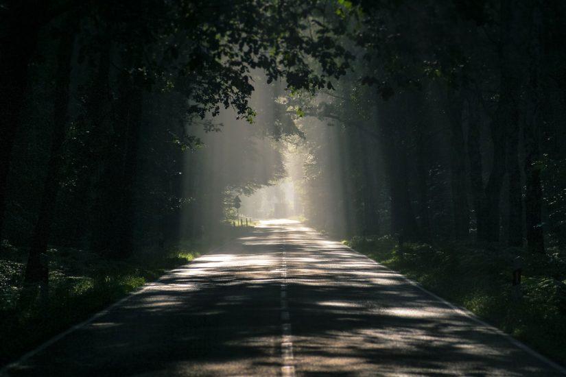 Light shining through trees on dark road