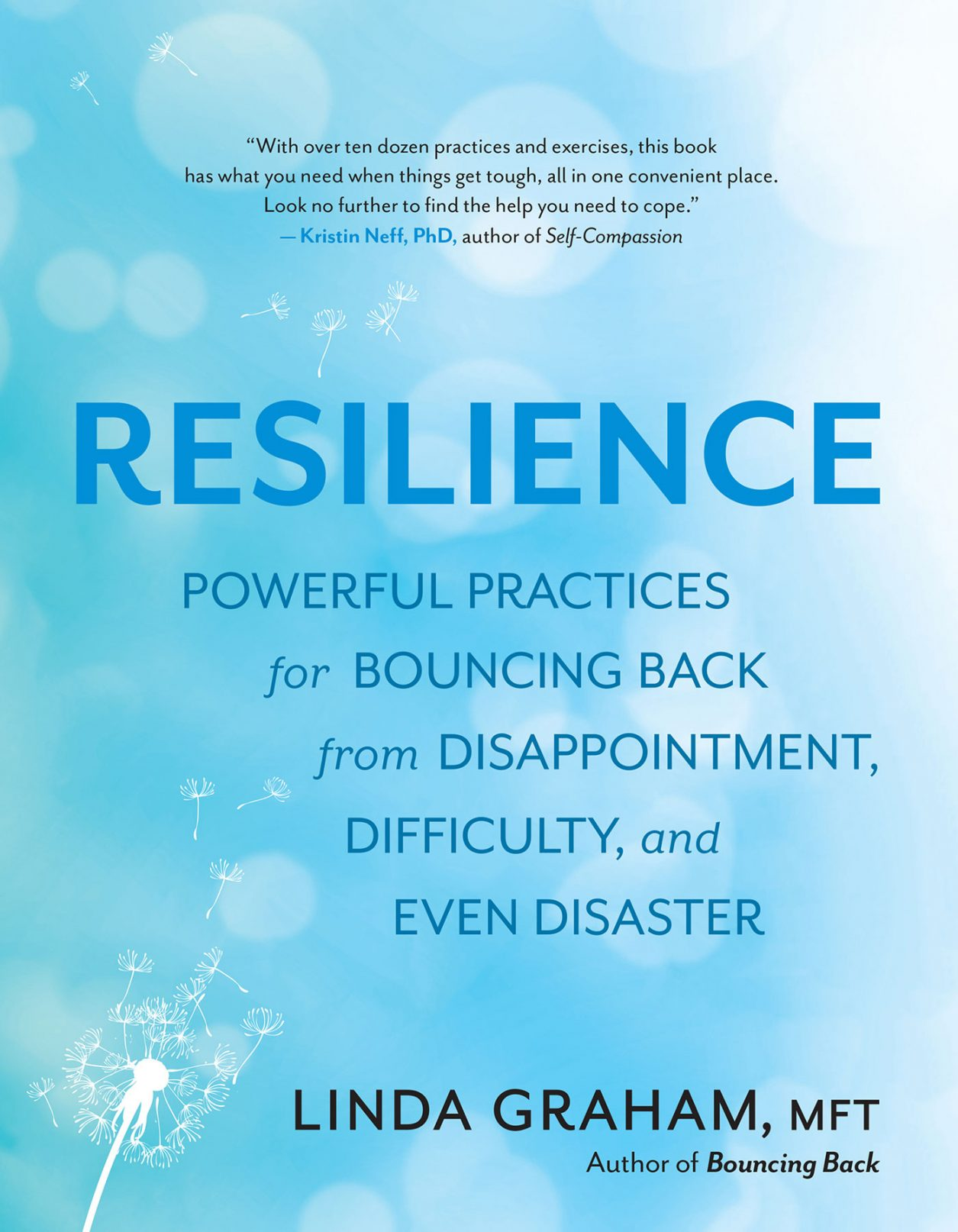 Resilience Powerful Practices for Bouncing Back from Disappointment, Difficulty, and Even Disaster by Linda Graham, MFT