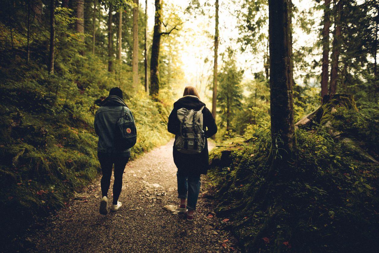two friends walking in woods